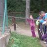 Veszprémi Állatkert